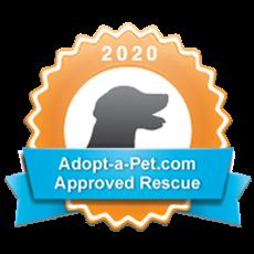 Adopt A Pet Dog