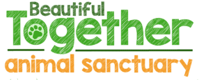 Beautiful Together Animal Sanctuary